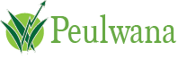 Peulwana Agricultural Financial Services