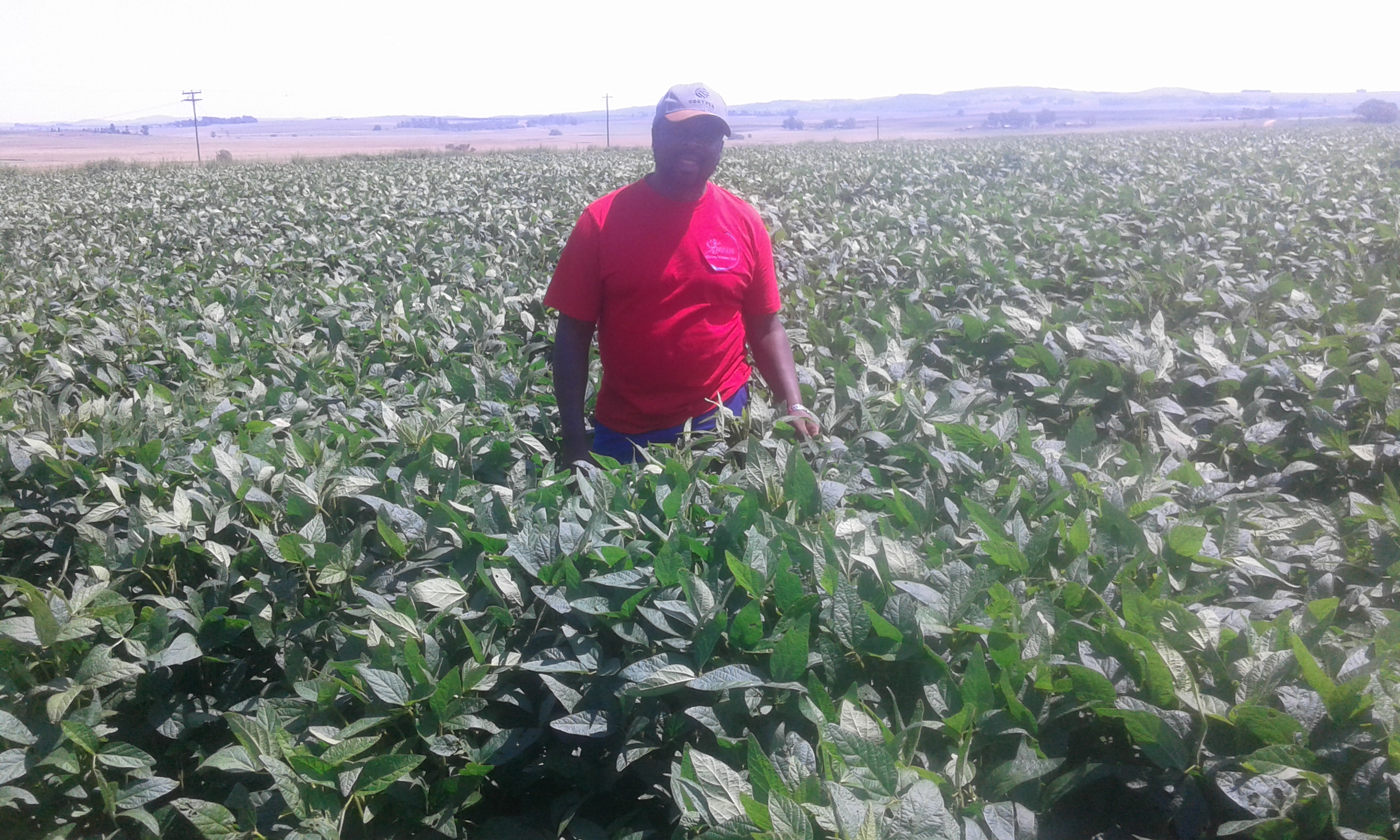 Farmer Themba Congwane in Nigel